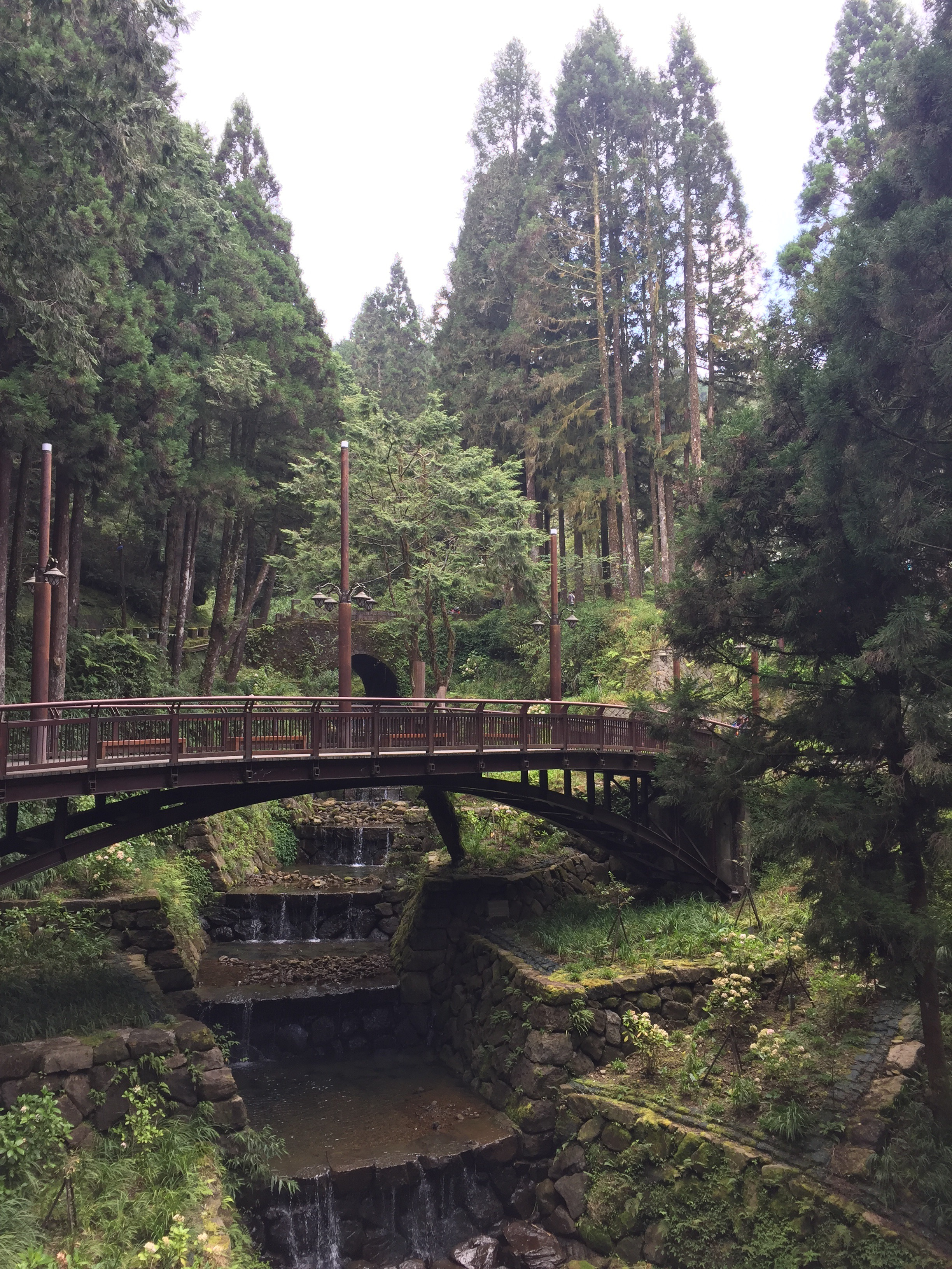 Fenchihu and the Alishan Forest Railway – thisteachertravels